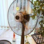 季節家電の収納(5)